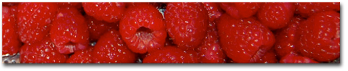 raspberry_banner